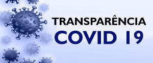 Acesso ao Portal de Transparência Covid 19